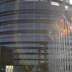 Biddle creates a healthy work environment at the European Parliament in Strasbourg